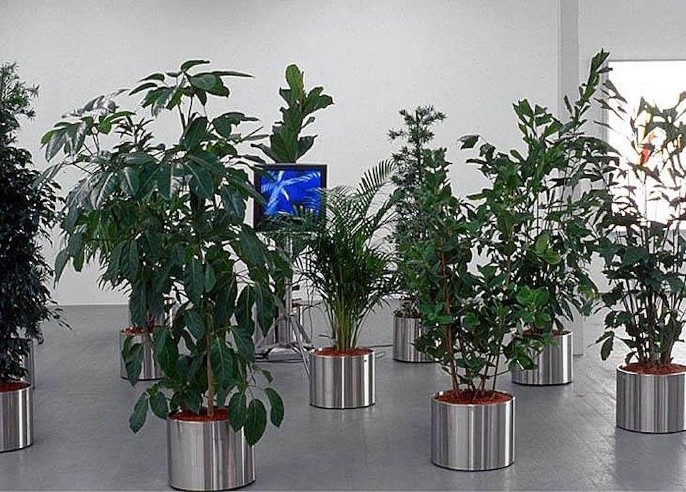 Sanguineti Pietro G 2003 3