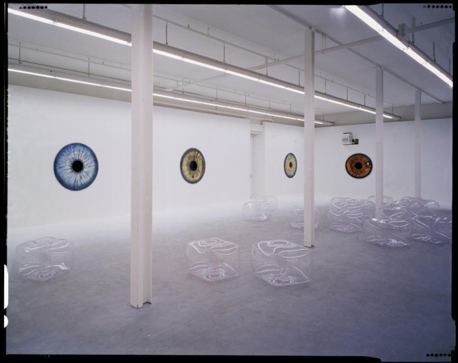 Feldmeier Sonja E 1999 1