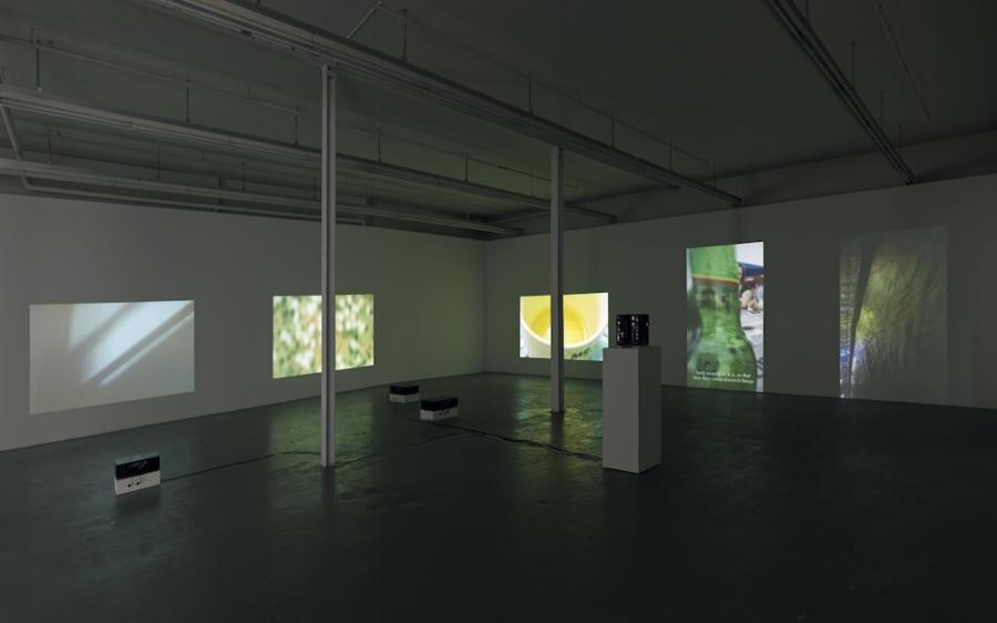 Okariz Itziar E 2017 9