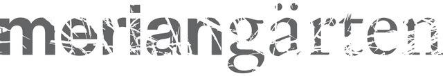07014 Rz Logo Grau Rgb